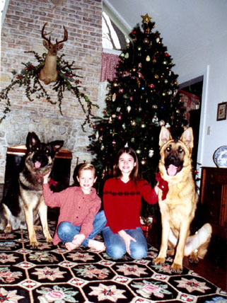 familygermanshepherd